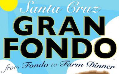 Gran Fondo – 2013